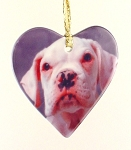 Pet Personalized Custom Photo Printed Porcelain Heart Ornament