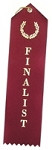 Finalist Award Ribbon 2x8