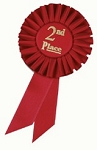 2nd Place Red Rosette Award Ribbon 3x6